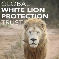 LYT_website_Referenties_Global_White_Lion_Protection_Trust_1